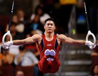 Gymnast_rings